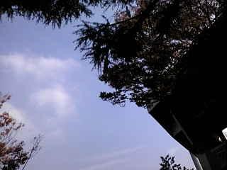 20111113110519.jpg